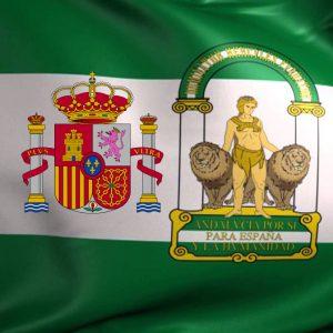 Tribunal Superior de Justicia de Andalucía, Ceuta y Melilla.